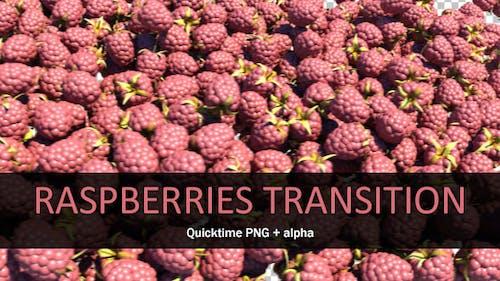 Raspberries Transition