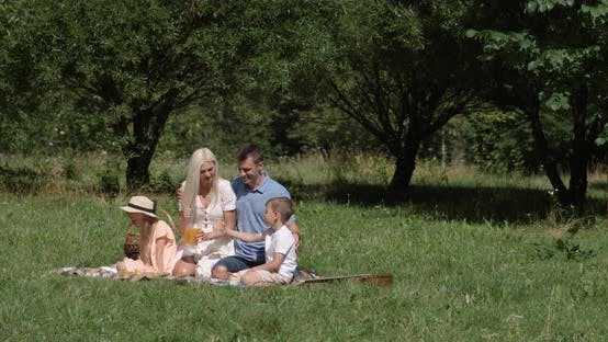 Picnic in Nature, Parents and Children Sit on a Blanket and Drink Orange Juice, Woman Pours Juice
