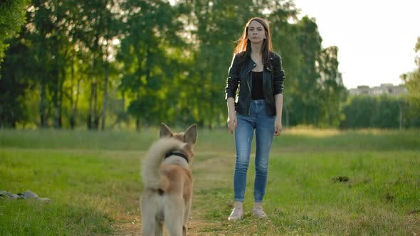 Attractive Female Throws a Tennis Ball To Her Dog To Bring It Back.