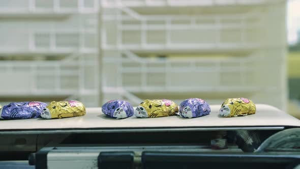 Thumbnail for Candy Factory. Wrapped Candies Lying on Conveyor.