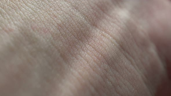 Macro Human Skin Background