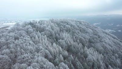 Winter Calmness
