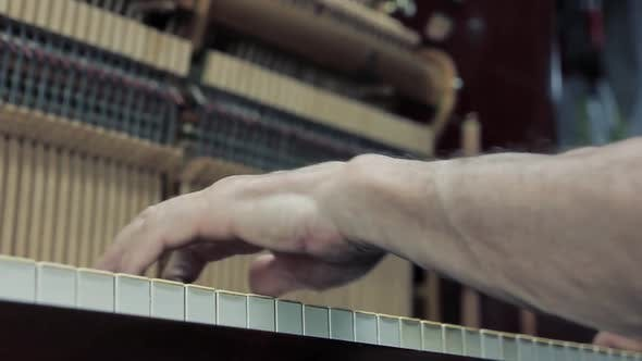 Thumbnail for Hand with Vintage Piano Hammer Mechanism. Prepare to Repair.