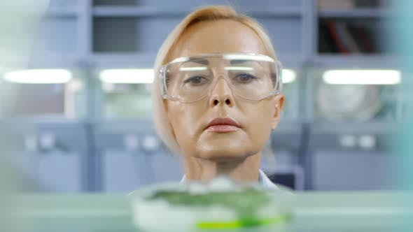 Cover Image for Scientist Analyzing Chemical Process
