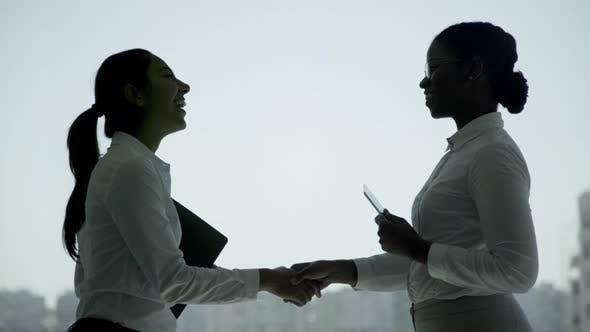 Thumbnail for Cheerful Businesswomen Shaking Hands