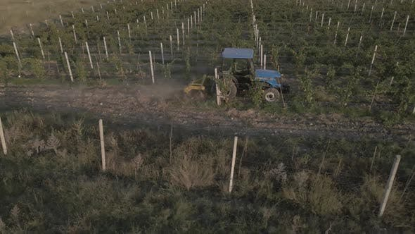 Thumbnail for Aerial view farmer on tractor mowing weeds between rows of grapevines in vineyard landscape