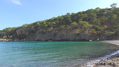 A Untouched Cove By Forest