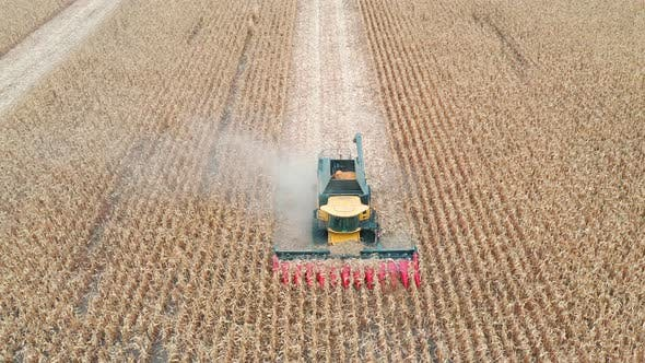 Thumbnail for Aerial Shot of Combine Gathering Corn. Flying Over Harvester Slowly Riding Through Field Cutting