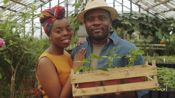 Portrait of Happy Afro-American Couple in Greenhouse