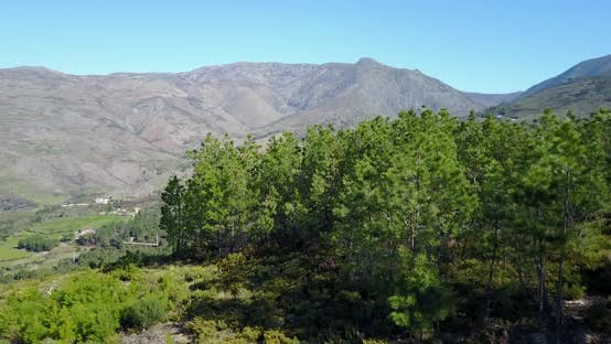 Thumbnail for Aerial view from the forest at Serra da Estrela Natural Park