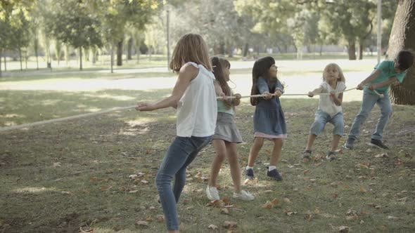 Adorable Children Playing Tug-of-war and Testing Their Strength
