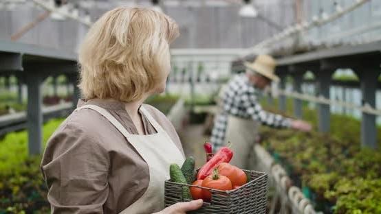 Thumbnail for Nahaufnahme der positiven kaukasischen Senior Frau mit Gemüsekorb Blick zurück auf männliche Agronomen