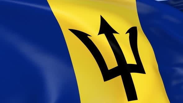 Thumbnail for Barbados Flag