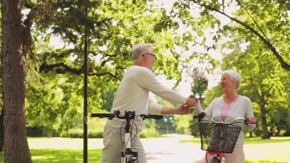 Thumbnail for Happy Senior Couple Riding Bicycles at Summer Park 1