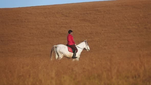 Thumbnail for Woman Riding a Horse Strokes and Hugs a in the Field