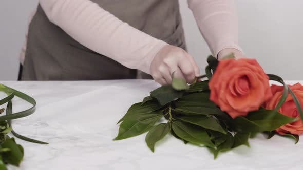 Thumbnail for Time lapse. Florist pruning red roses for bouquet arrangement