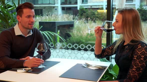 Thumbnail for A Man and a Woman Sit at a Table in a Restaurant and Drink Wine, the Man Talks and the Woman Listens