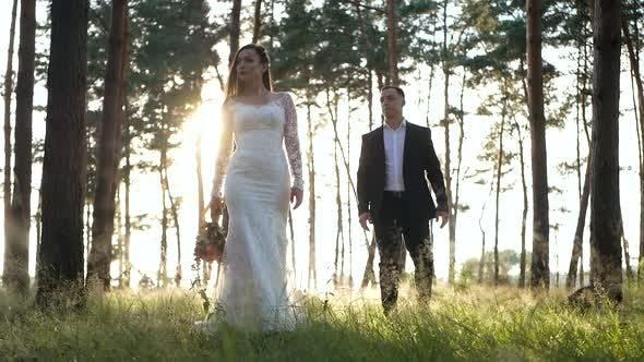 Élégant et tendre couple amoureux - la mariée et le marié dans le parc