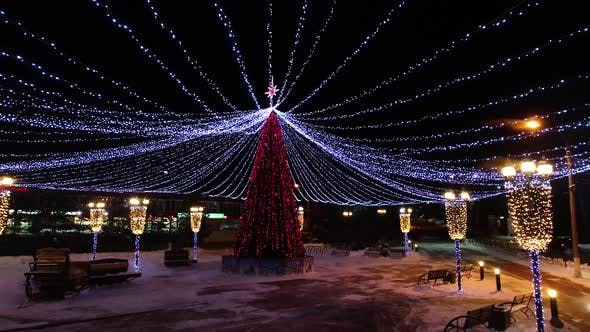 Thumbnail for Christmas Tree in the Park
