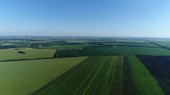 Top View of Beautiful Green Fields Russia
