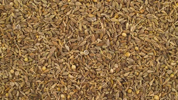 Thumbnail for Anise Seeds Pile Rotating