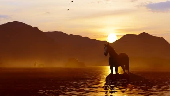 Thumbnail for Wild Horse Watered in Mountainous Area at Sunset