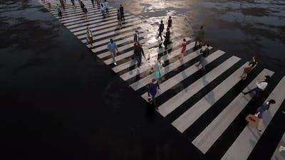 Pedestrians Cross the Road on a Zebra