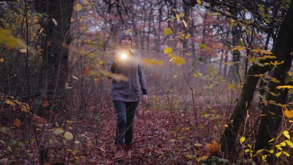 Thumbnail for A Woman with a Flashlight Is Walking Through a Dark Forest, Looking for Something. Search for the