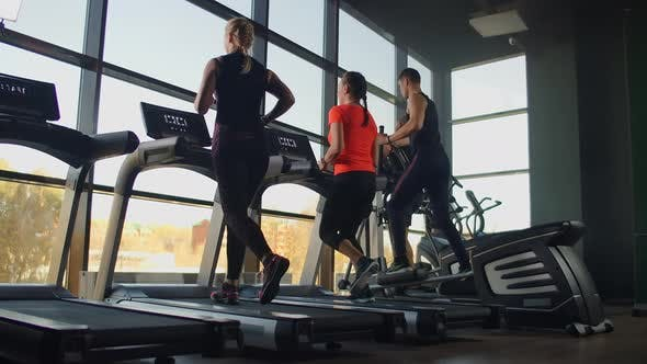 A Group of People Running on Treadmills Near a Large Panoramic Window. Group Cardio Workout