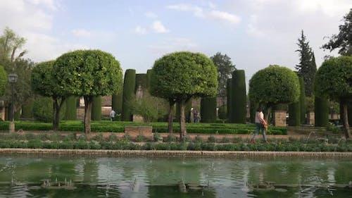 Bäume und Teich in den Gärten des Alcazar