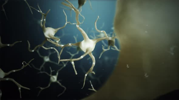 Thumbnail for Loop Neuron Cells Connections World