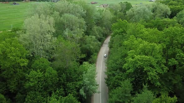Aerial Top Down  View of White Car Driving on Rural Road in Forest