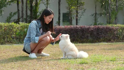 Woman Giving Trick to Her Dog