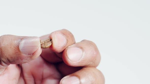 Thumbnail for Finger halten eine geröstete Kaffeebohne aus der Mitte