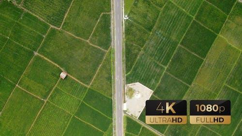 AH - Top View Rice Fields 02