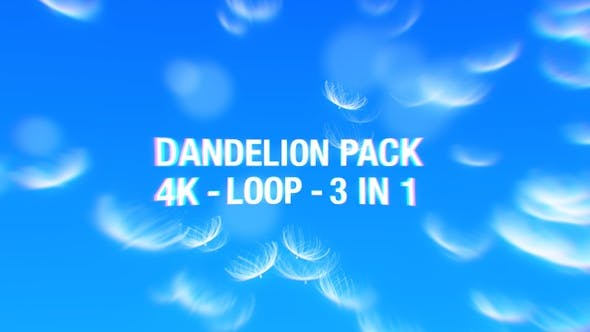 Thumbnail for Dandelion Loop 4K Pack