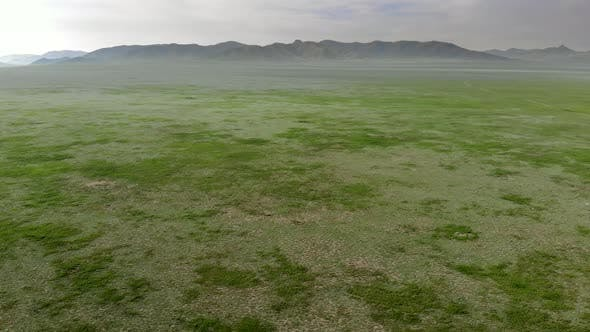 Vast Empty Meadow of Central Asian Lowland