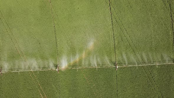 Thumbnail for Automatic Irrigation of the Field with Specialized Equipment