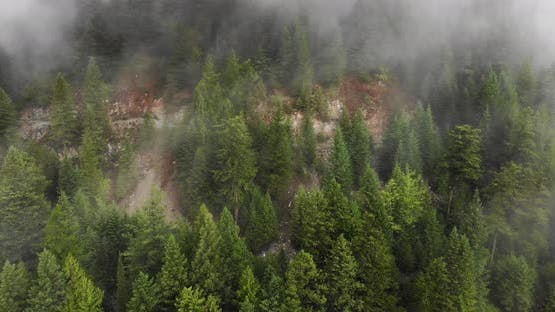Flying Away From Lead Hill Mine Showing View of Large Forested Area With Fog