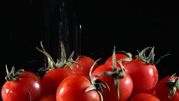Thumbnail for Bio-Gemüse-Tomate
