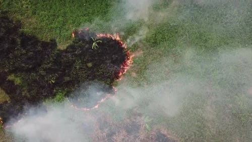 Emission air pollutant due to open fire by farmer