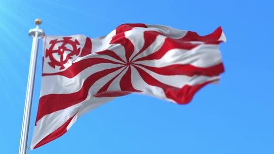Mulhouse City Flag