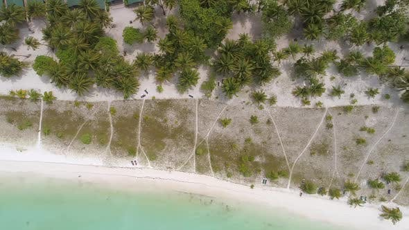 Thumbnail for Aerial view of resort in the middle of forest, Maldives island.