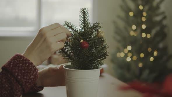 Female Decorating Little Christmas Tree