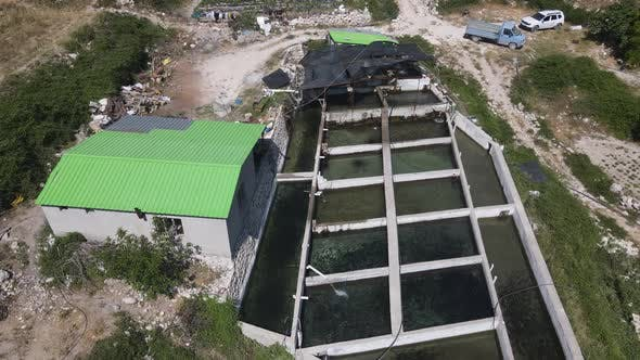 Facility Fish Aerial View Industry