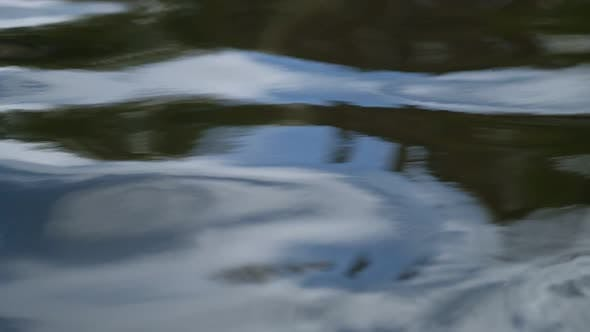 Thumbnail for Water Leaves And Reflections Super Slow Motion
