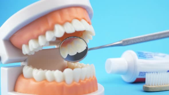 Thumbnail for Dental Doctor Examines the Oral Cavity