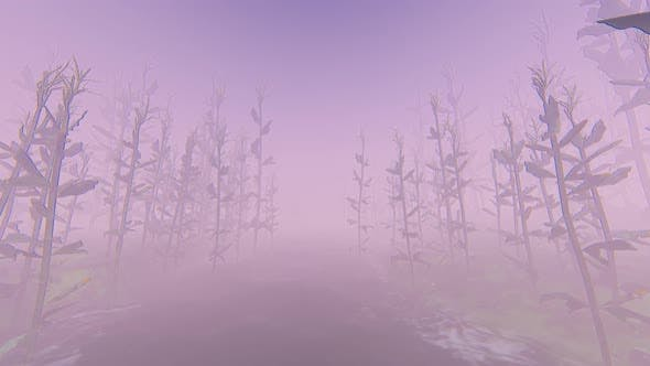 Thumbnail for Fog And Forest 2k
