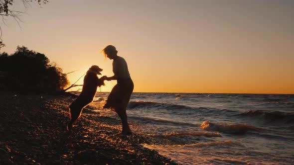 Silhouette of a Woman Who Plays with Her Dog Breed Caucasian Shepherd at Sunset