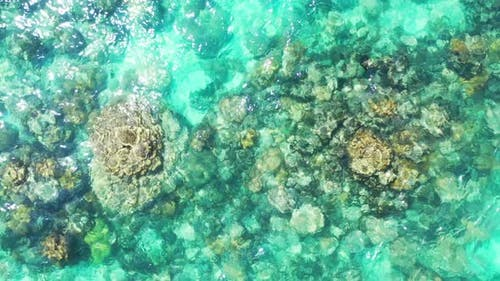 Wide angle overhead abstract shot of a summer white paradise sand beach and aqua blue water backgrou